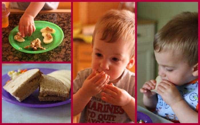 PB&J Hummus Dip Bug Collage
