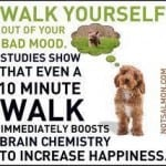 Feel better by following these sage words of advice from a dear friend - walk!