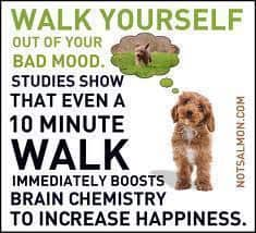 Walk yourself