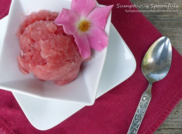 Watermelon Basil Rose Sorbet