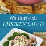 Waldorf-ish Chicken Salad