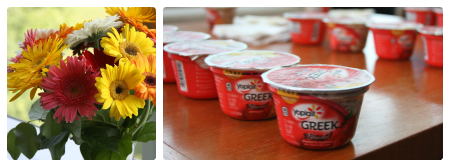 Yoplait intro Collage