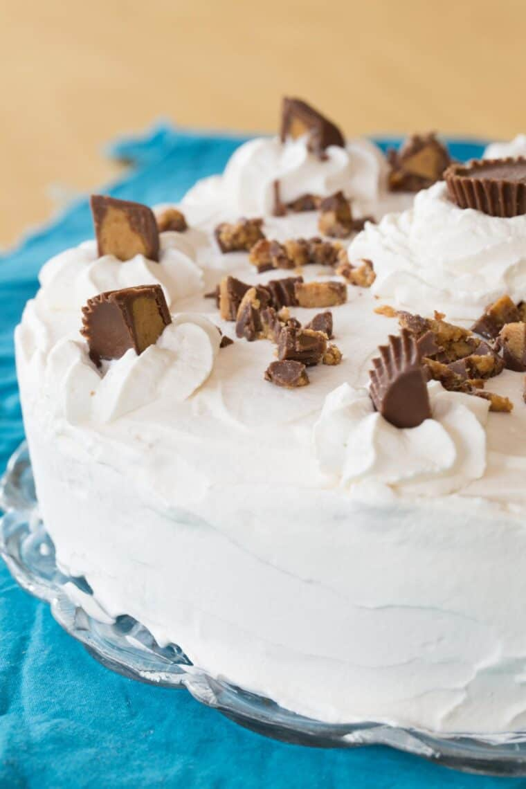 outside of an ice cream cake covered with whipped cream and decorated with Reese's peanut butter cups