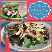 Autumn-Turkey-Apple-Salad-Wraps-Collage-title.jpg