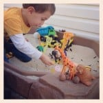 Bug animals sandbox