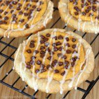Chocolate chip pumpkin cheesecake pastries