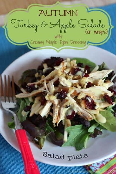 Autumn Turkey & Apple Salads or Wraps | cupcakesandkalechips.com | #salad #turkey #glutenfree