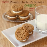 Flourless-Peanut-Butter-Nutella-Smores-Sandwich-Cookies-1-title.jpg