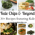 30+ Recipes for Kale Chips & Beyond for Cupcakes & Kale Chips 2nd Blogiversary
