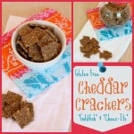 Gluten Free Cheddar Crackers Collage Square