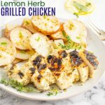 Lemon Herb Grilled Chicken Breasts square photo with title