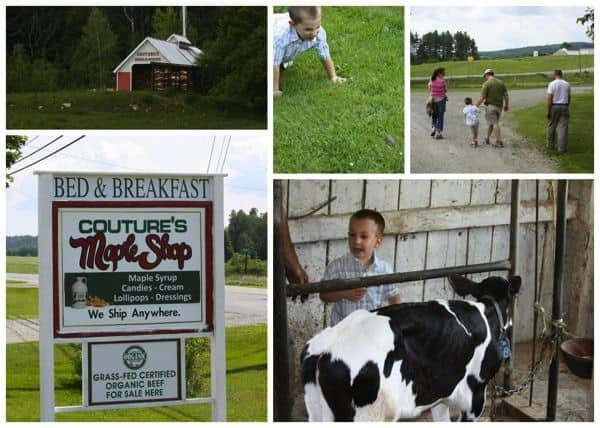 Vermont Farm Tour Collage