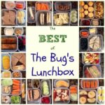 Best of Bugs Lunchbox