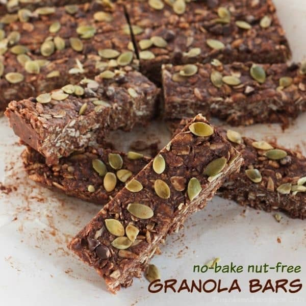 No-Bake Nut-Free Granola Bars - and easy and indulgent healthy snack with chocolate and coconut, but not a lot of sugar from the sugarfreemom.com cookbook | cupcakesandkalechips.com | gluten free, dairy free, vegan