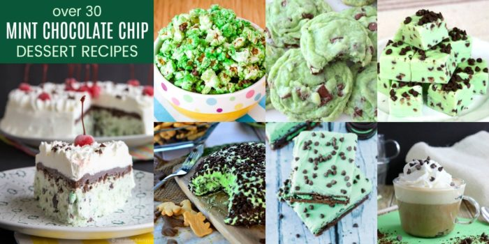Best Mint Chocolate Chip Desserts