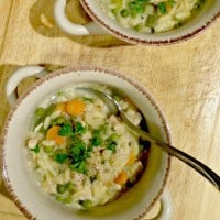 Chicken & Orzo Stew S