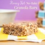 Honey Nut No Bake Granola Bars Recipe-0626 title