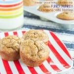Flourless Oatmeal Peanut Butter Banana Chocolate Chip Mini Muffins recipe-3234 title