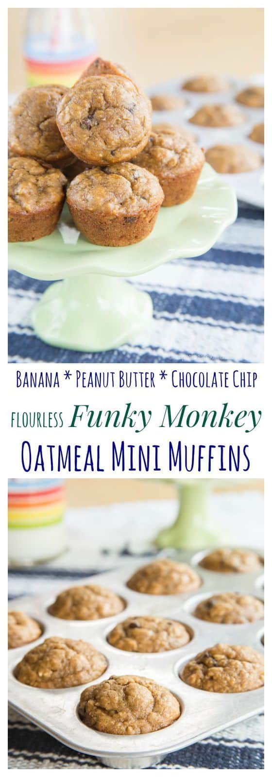 Flourless Funky Monkey Oatmeal Mini Muffins - that favorite combination of bananas, peanut butter, and chocolate in a healthy breakfast or snack | cupcakesandkalechips.com | gluten free and dairy free options