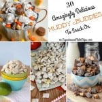 30 Amazing Muddy Buddies Recipes