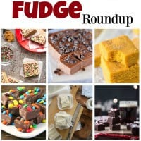 Fudge-Collage-Sq_edited-1