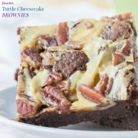 Flourless Turtle Cheesecake Brownies recipe-5573 title