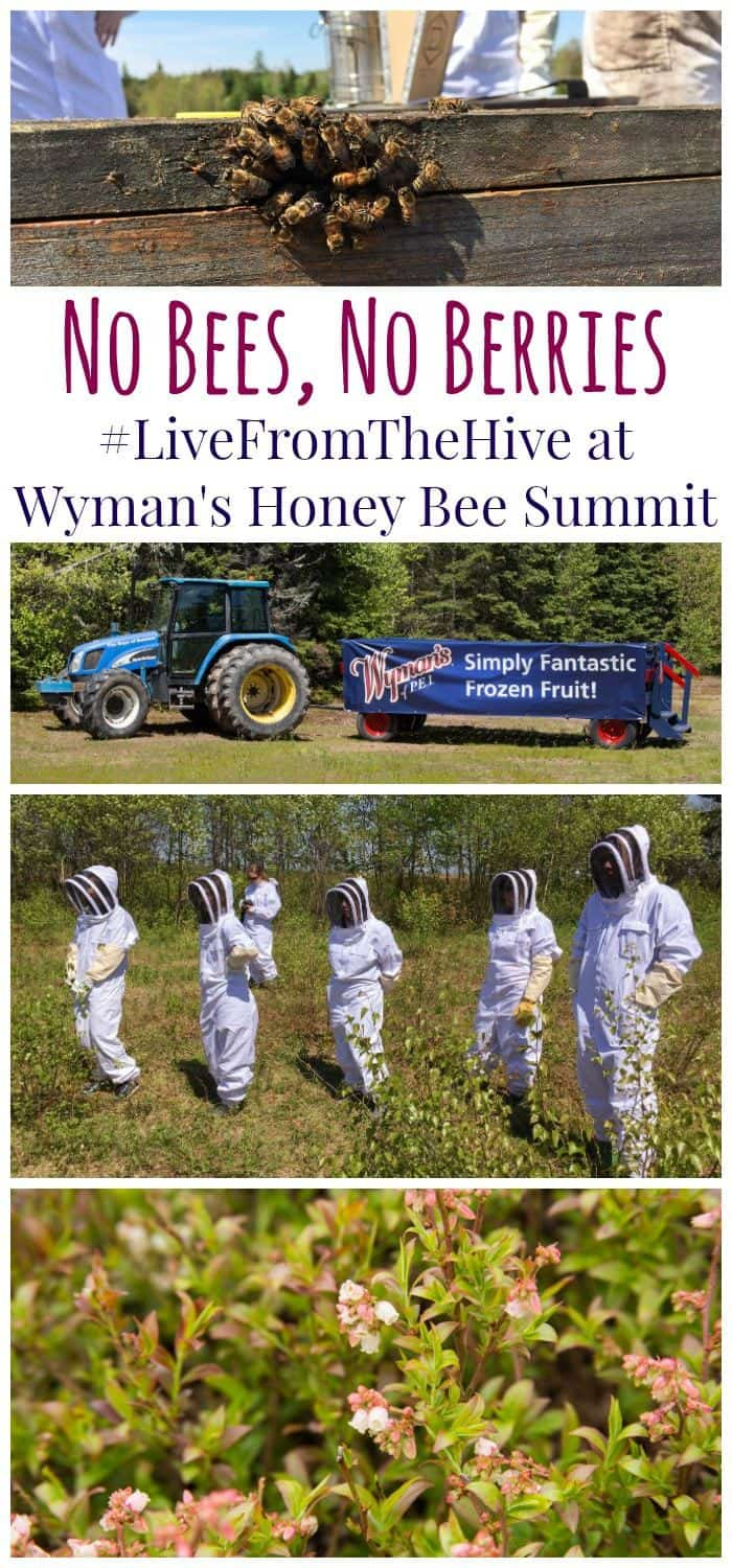 No Bees, No Berries - #LiveFromTheHive at the Wyman's Honey Bee Summit in Prince Edward Island