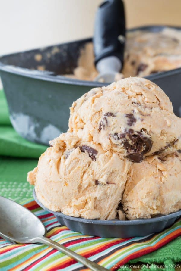 Nutella Swirl Pumpkin No Churn Ice Cream