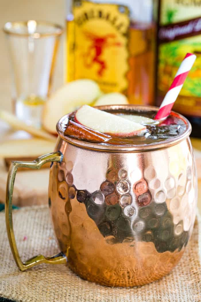 Apple Cider Moscow Mule - the Perfect Fall Cocktail Recipe