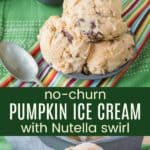 No-Churn Pumpkin Ice Cream with Nutella Swirl Pinterest Collage