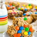 One Bowl Monster Cookie Bar Recipe image with title