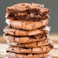 Flourless Fudge Cookies