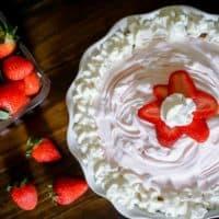 Frozen Strawberry Yogurt Pie