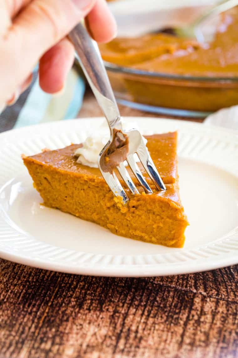 A fork taking a bite of crustless pumpkin pie
