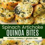 Cheesy Quinoa Spinach Artichoke Bites Pinterest Collage