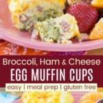 Ham Broccoli Cheese Egg Muffin Recipe Pinterest Collage