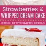 Strawberries and Whipped Cream Cake Pin Template Long