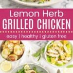 Lemon Herb Grilled Chicken Pin Template Long