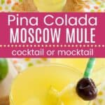 Pina Colada Moscow Mule Pin Template Long