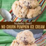 Nutella Swirl No-Churn Pumpkin Ice Cream Pinterest Collage