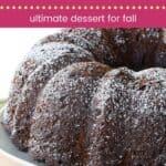 Gluten Free Chocolate Pumpkin Cake Pin Template Dark