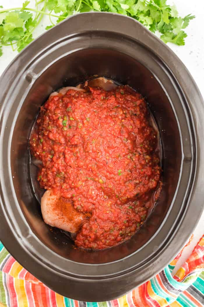 salsa chicken ingredient in slow cooker