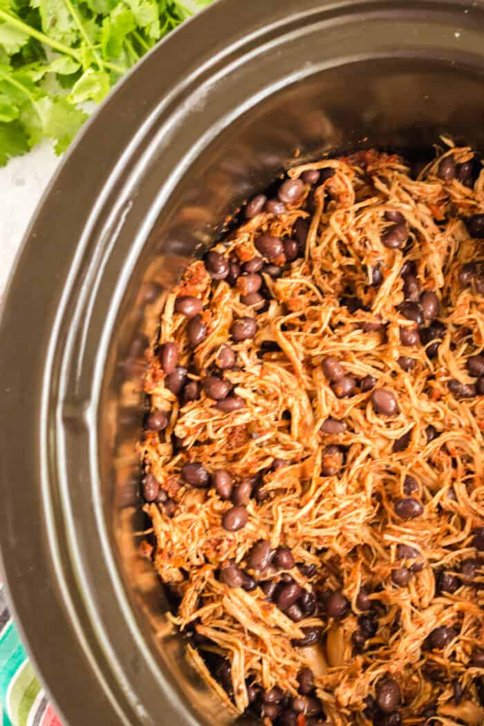 Overhead of chicken with black beans in crockpot