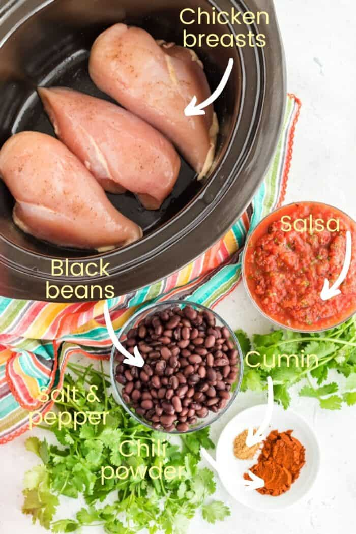 Labeled ingredients to make slow cooker salsa chicken