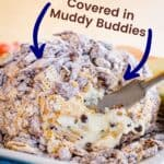 "Peanut Butter Chocolate Chip Cheese Ball Pin with text that says ""covered in Muddy Buddies"""