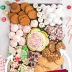 Final assembled gluten free christmas cookie platter