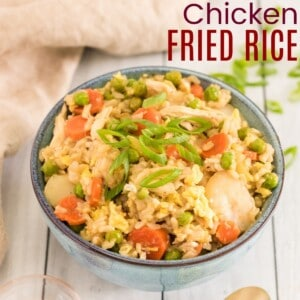 bowl of chicken fried rice topped with sliced scallions