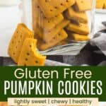 rectangle shaped gluten free pumpkin cookies ina jar and on a plate